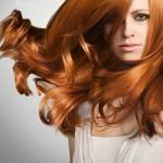 Ginger-150x150